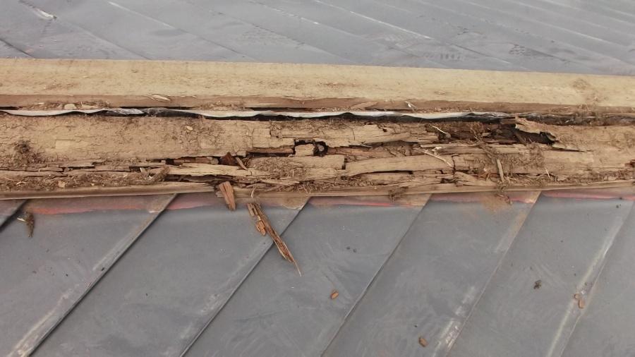 雨漏りで傷んだ下地の写真
