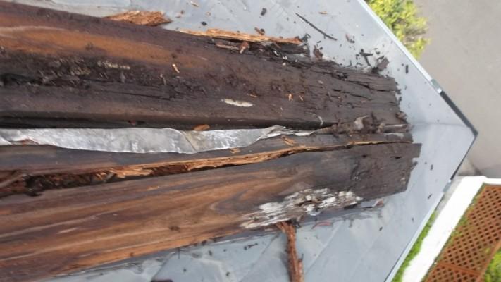 朽ちた貫板の写真