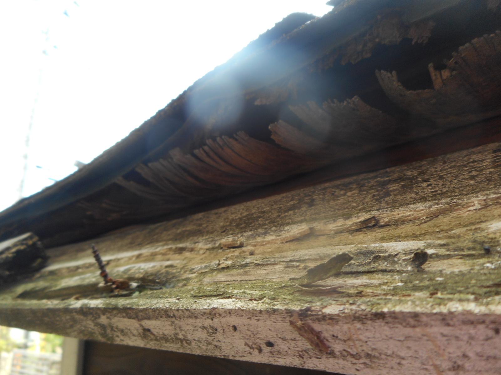 仙台市宮城野区で物置小屋の屋根張り替えを行いまた。