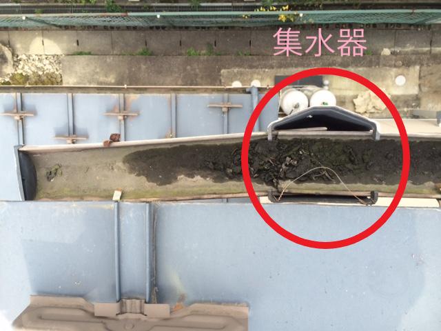 仙台市若林区で雨樋の調査、応急処置を行いました。