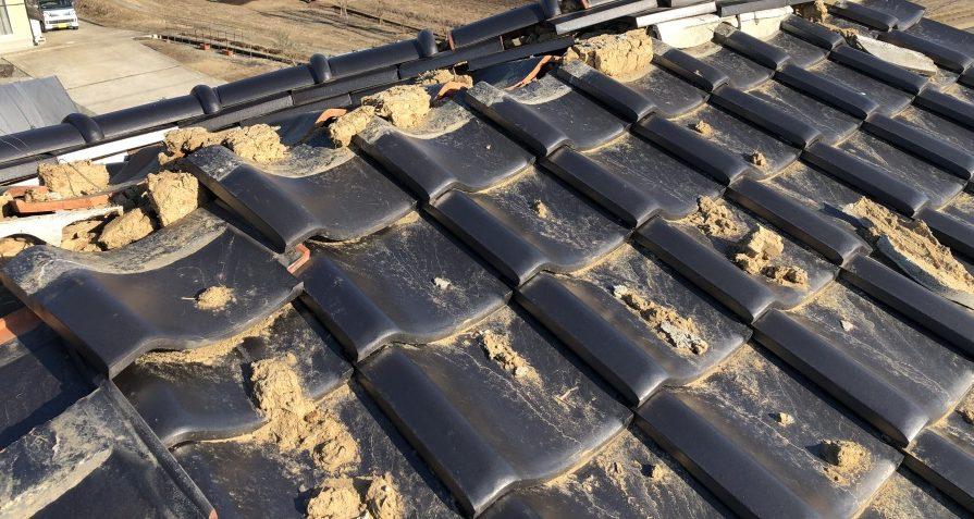 地震被害の瓦屋根